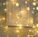 LED Lichterkette,Cshare 3m LED Draht Micro Lichterkette,Micro 30 LEDs Lichterkette AA Batterie betrieb für Party, Garten, Weihnachten, Halloween, Hochzeit, Beleuchtung, Zimmer (Warmweiß)