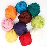 mjolda Filzwolle - 10 Farben je 50 Gramm- zum Nassfilzen und Trockenfilzen, ca. 500gr. Bunte Farben zum Filzen im Paket