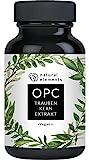 OPC Traubenkernextrakt - 240 Kapseln für 8 Monate - Laborgeprüftes OPC aus europäischen Weintrauben