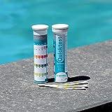 BAYROL Quicktest - 50 Pool Teststreifen zur Wasseranalyse - pH Wert - freies Chlor - Alkalinität & Algizid im Pool - Teststreifen die bei Kontakt mit Wasser reagieren