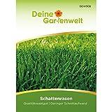 Schattenrasen 45 g Samen   Nachsäpackung für 1,5 m²   Rasensamen   Rasen Saatgut   Grassamen