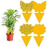 Vegena Fruchtfliegenfalle, 60 Stück Gelbtafeln Fliegenfalle Gelbsticker Obstfliegenfalle Fliegenfänger Gelbfalle Klebefalle Insektenfalle für Zimmerpflanzen Trauermücken Topfpflanze Blattläuse Garten