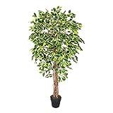 Homescapes Kunstbaum Ficus Benjamini grün weiß 180 cm