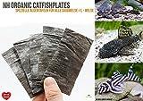 NatureHolic - CatfishPlates - Algentafeln (5 STK.) für alle Saugwelse/L - Welse
