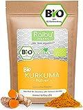 RAIBU® Kurkuma Pulver BIO 1kg I Curcuma Pulver in geprüfter BIO-Qualität abgefüllt in Deutschland I Rückstandskontrolliert & Rohkost-Qualität I Aus kontrolliertem Bio-Anbau