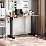 Forfar Elektrisch Höhenverstellbarer Schreibtisch,Ergonomischer Steh-Sitz Tisch mit Memory Funktion (120 x 60, Schwarzer Rahmen + Rustikaler Brauner Desktop)