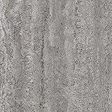 Venilia Klebefolie Industrial-Optik Beton Dekofolie Möbelfolie Tapeten selbstklebende Folie, PVC, ohne Phthalate, grau, 45cm x 2m, Stärke: 0,095 mm, 53134